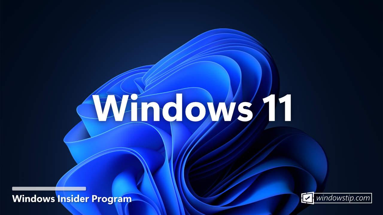 Windows Insider Program - Black